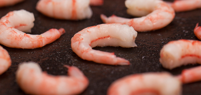 shrimp-product